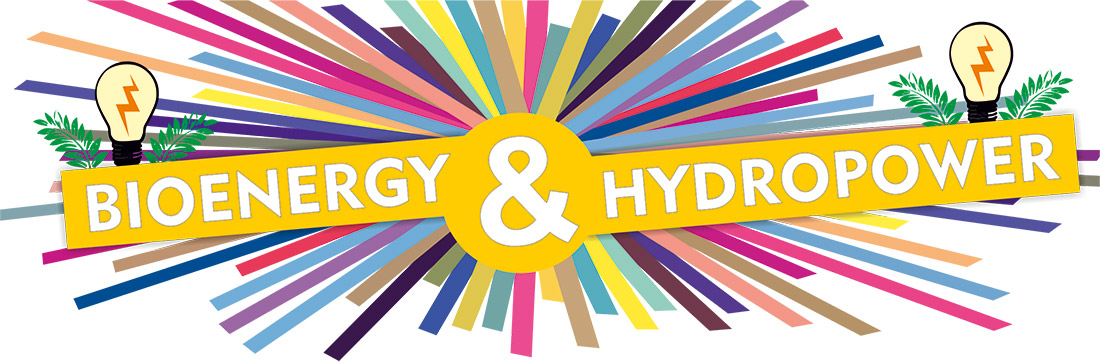 Bioenergy & Hydropower in India